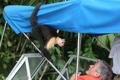 Monkey Island Trip