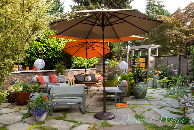 Orange acents in the Garden_6514.jpg