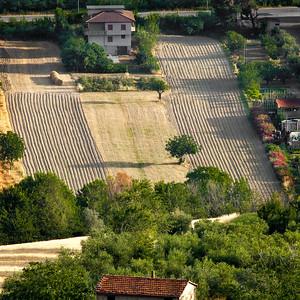 Terre Picene - June 2012