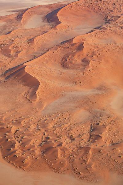 Namibia 69A4414.jpg