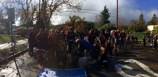 Los Gatos Parade 2014
