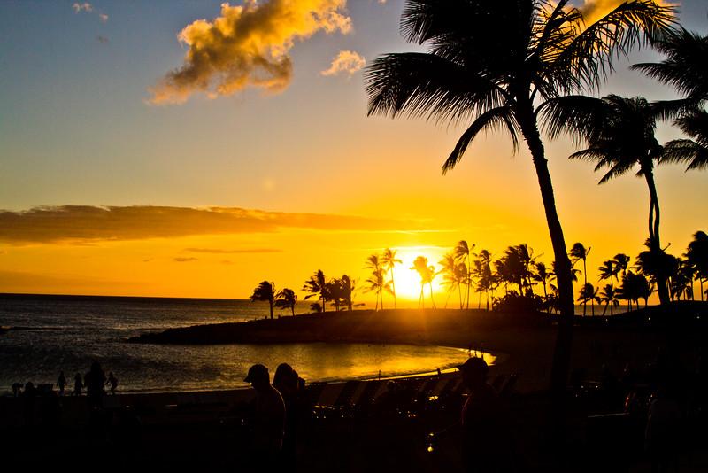 Journey into Oahu Photograph 188
