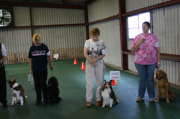 2008 Obedience/Rally Trial