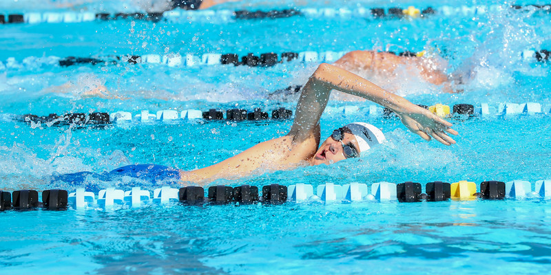 10.30.18 CSN Swim-Dive Districts-409.jpg