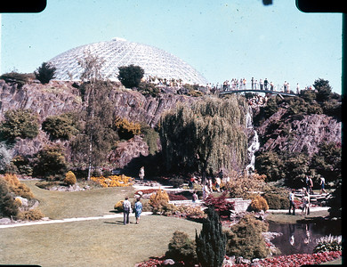 Bloedel Conservatory, The Quary Gardens