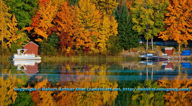 LI: Autumn Beauty !