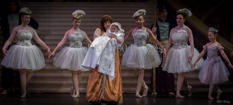 2015-09-09 Susan's Sleeping Beauty Picks 2