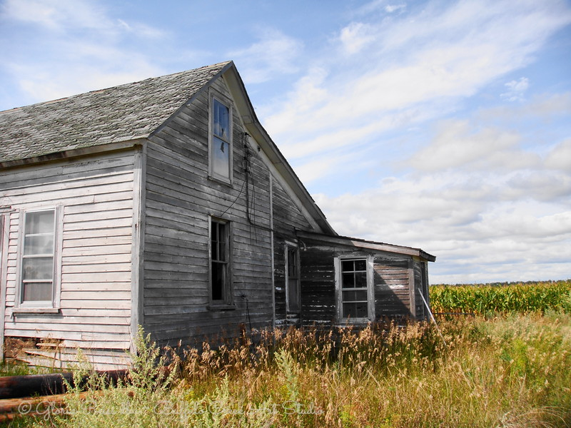 old house in a corn field