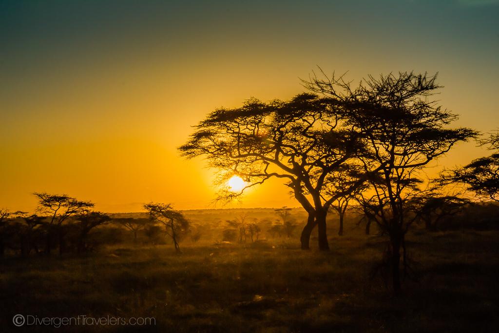 Sunset over the Serengeti - Tanzania Safari