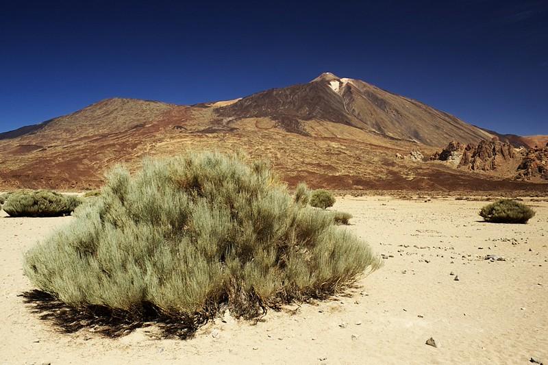 Teide a Pico Viejo z vyhlídky Llano de Ucanca