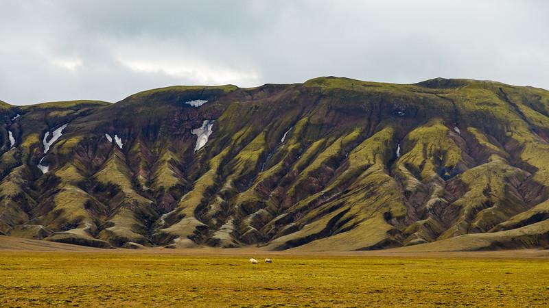 Iceland19_-1778.jpg