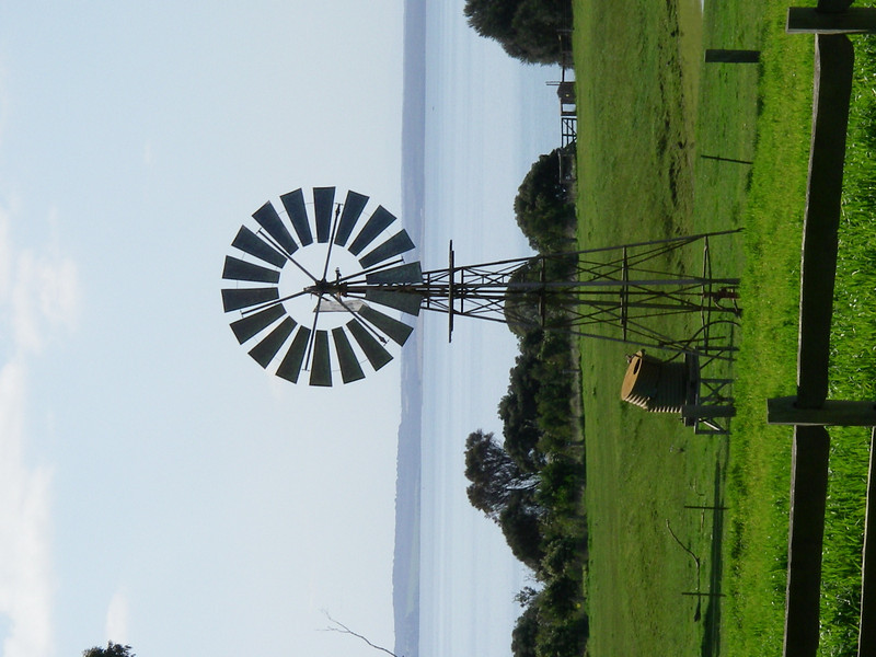 Puffing Billy and Phillip Island 124.JPG