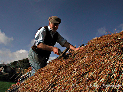Thatching @ Priddy