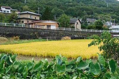 Yabuhara Post Town