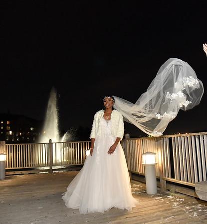 Elana N Sanmi Bolaji