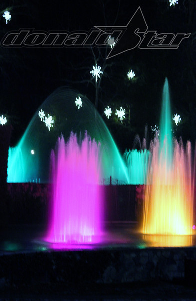 Longwood Gardens 2012-01-06 065.JPG