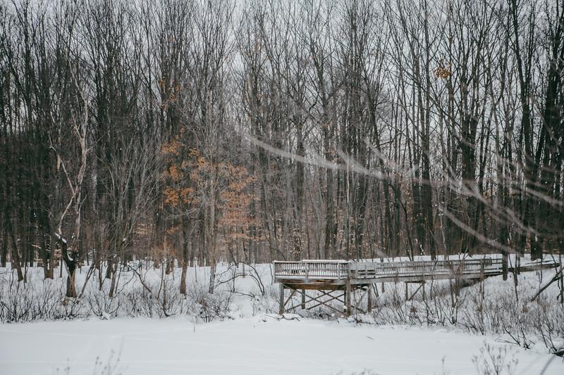 AVS_EcoPreserve_Winter2021-8.jpg