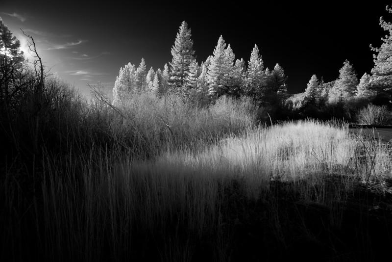 tahoe_581.jpg