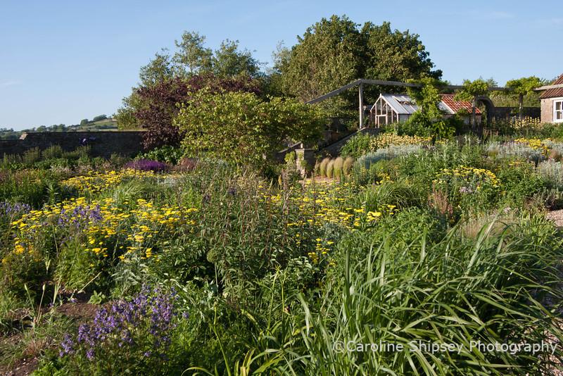 The Organic Gardens, Holt Farm-2405.jpg