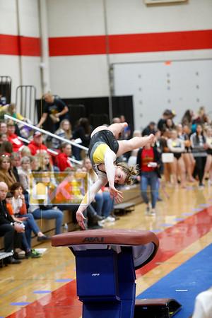 State gymnastics (rd 7, 8)