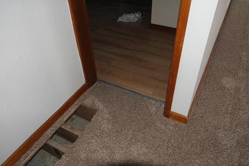 Before-After Carpet-18.jpg
