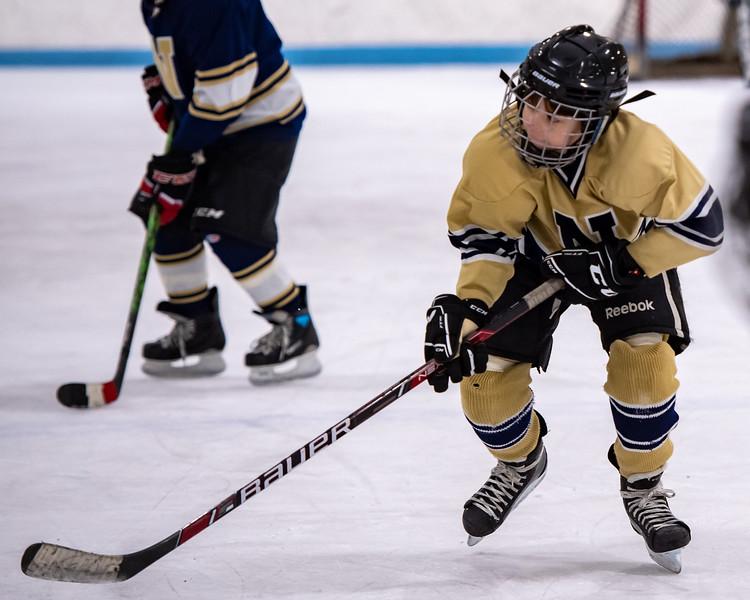 2019-Squirt Hockey-Tournament-250.jpg