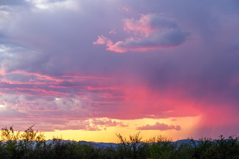 Distant rain in the Sonoran Desert of Arizona during sunset