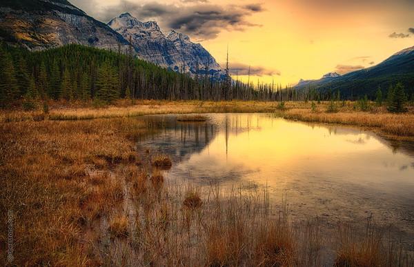 Banff and Jasper 2012