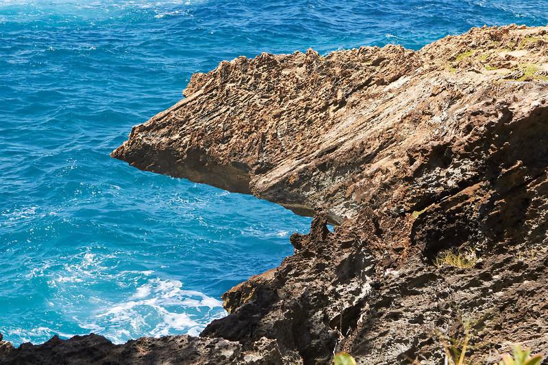 Hawaii960.jpg