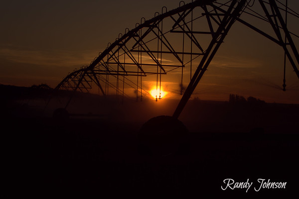 The Morning sun through the Pivot