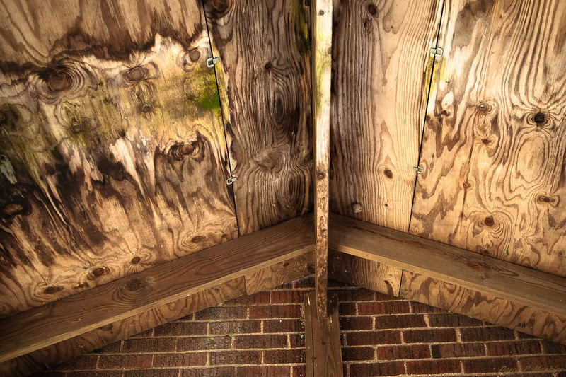 Moldy Roof