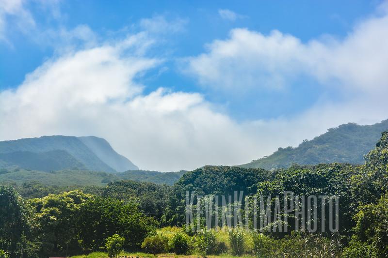 Maui148.jpg
