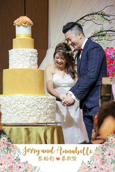 Vivid-with-Love-Wedding-of-Annabelle-&-Jerry-50335.JPG