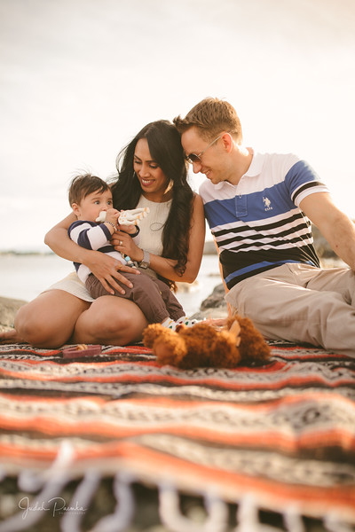 Baby Shower; Engagement Session; Mount Washington HCP Gardens; Chinese Village; Victoria BC Wedding Photographer-136.jpg