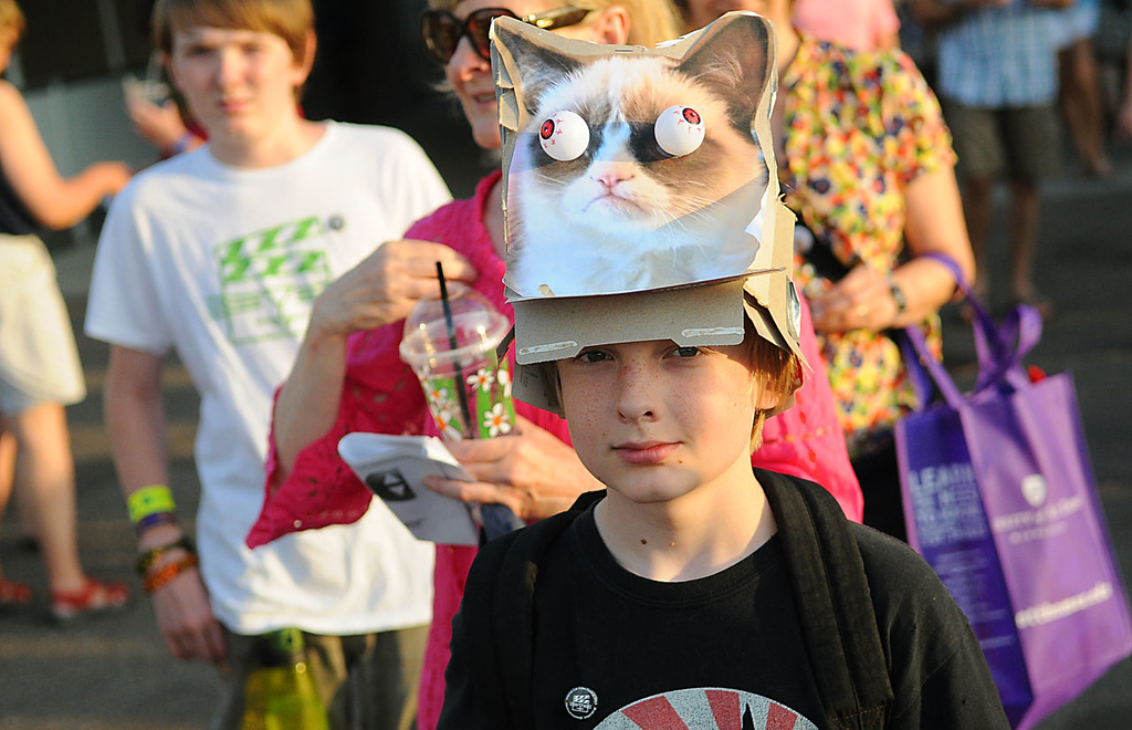 """. A young of \""""Grumpy Cat\"""" enters the 2013 Internet Cat Video Festival presented by Walker Art Center at the Minnesota State Fair Grandstand, Wednesday, August 28, 2013 in Falcon Heights. (Pioneer Press: John Autey)"""