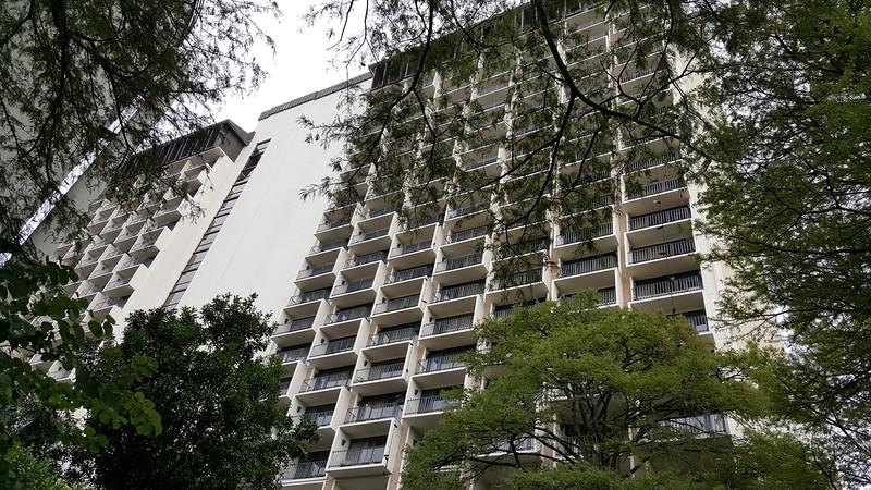 Our hotel - Hilton Palacio Del Rio