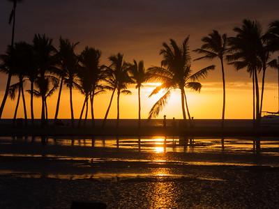 Hawaii-Portfolio
