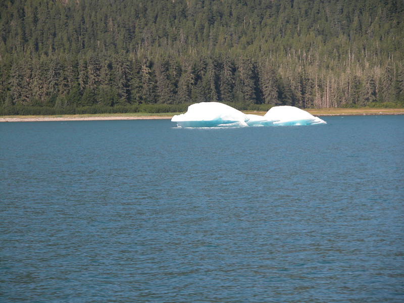 Alaska_20040089.jpg