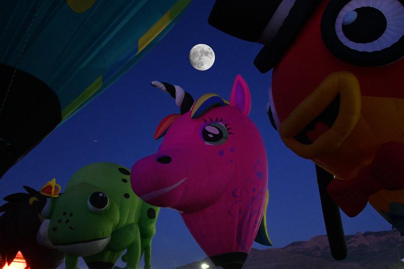 NEA_0636-Moon-Pony.jpg