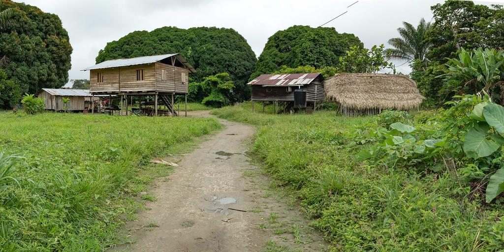 Suriname-6068-Pano