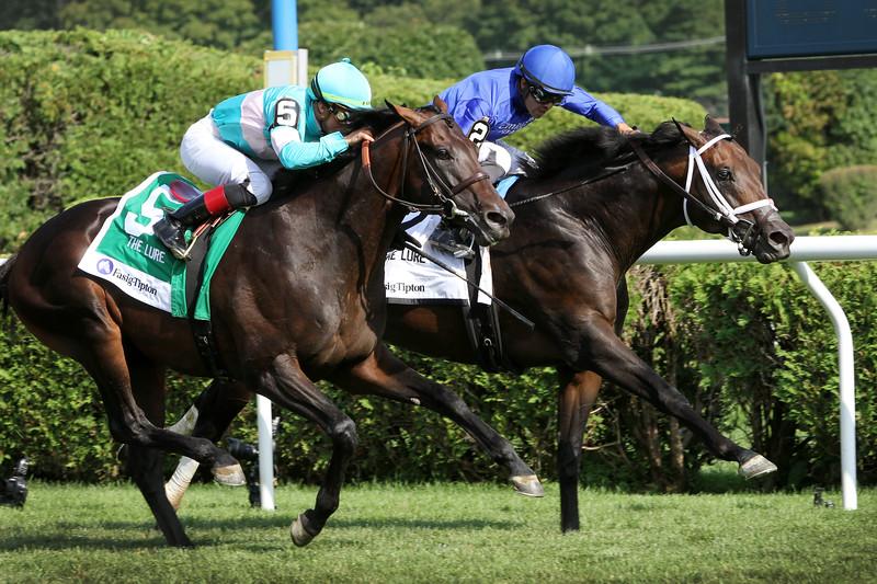 Lucullan (Hard Spun) and jockey Luis Saez win the Fasig-Tipton Lure at Saratoga Racecourse 8/3/19. Trainer: Kiaran McLaughlin. Owner: Godolphin Stable