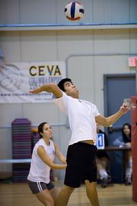 VTC Volleyball B-League November 2008
