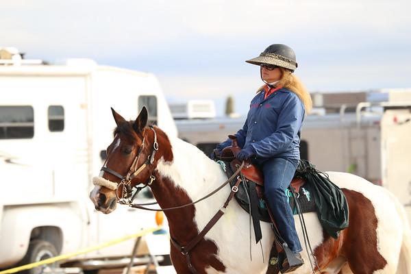 Wild Rose-Tucson Equestrian Center 1-13-19
