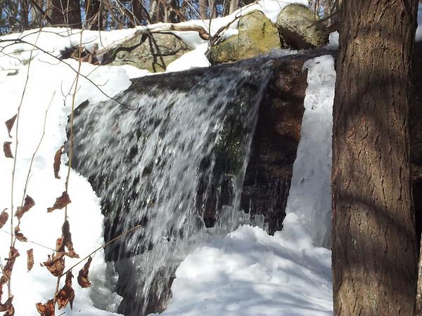 Trescow Falls 2-22-14