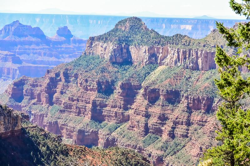 2019 Grand Canyon-206.jpg