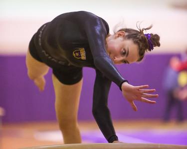 Gymnastics 1/21/21