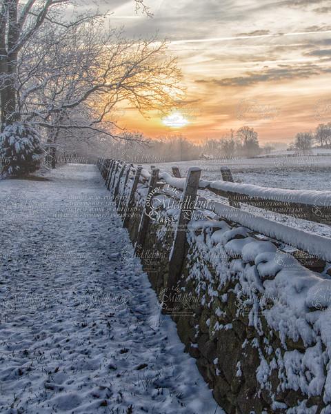 Snow landscaps