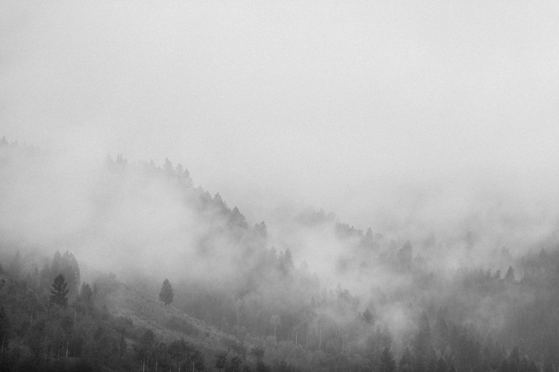 Wyoming Range 100-5584.jpg