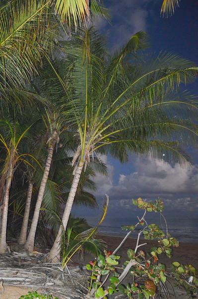 160227 Kurt's Puerto Rico 2016-118.jpg