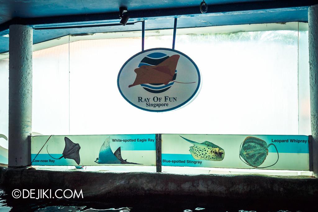 Underwater World Singapore - Ray of Fun